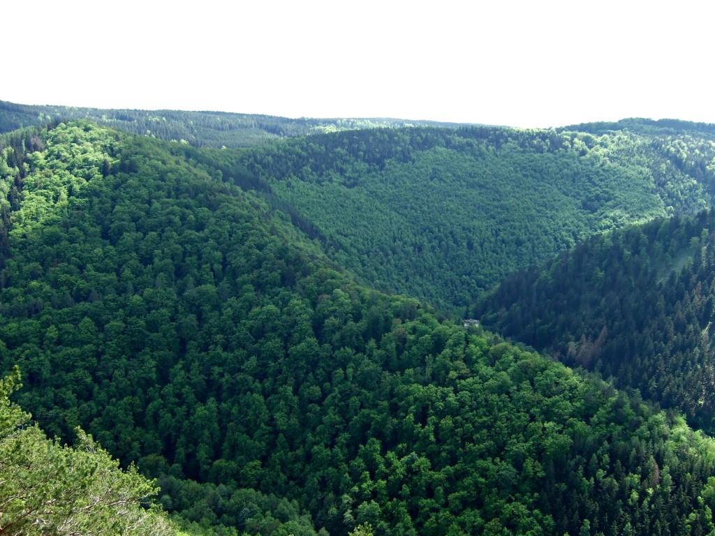 Aussicht-Panoramaweg Schwarzatal