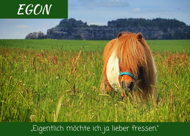 Egon Verwandert