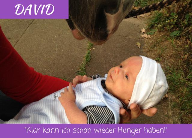 David Verwandert