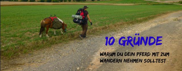 Wandern mit Pferd - Packpony