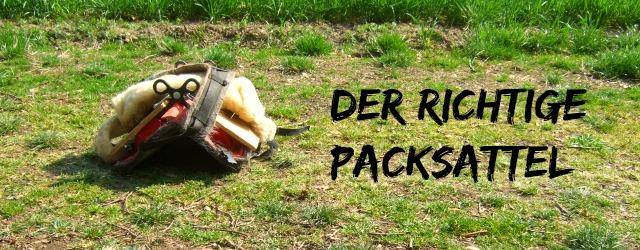 Header-Packsattel