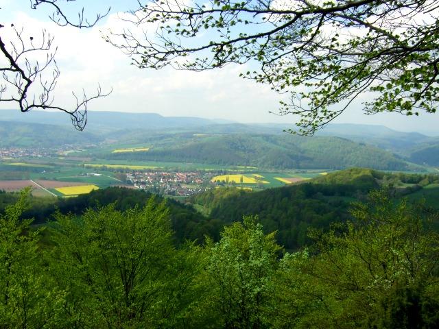 Mainzer-Köpfe-Aussicht2