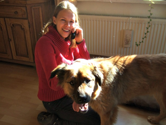 Hund-aus-Rumänien-Becky