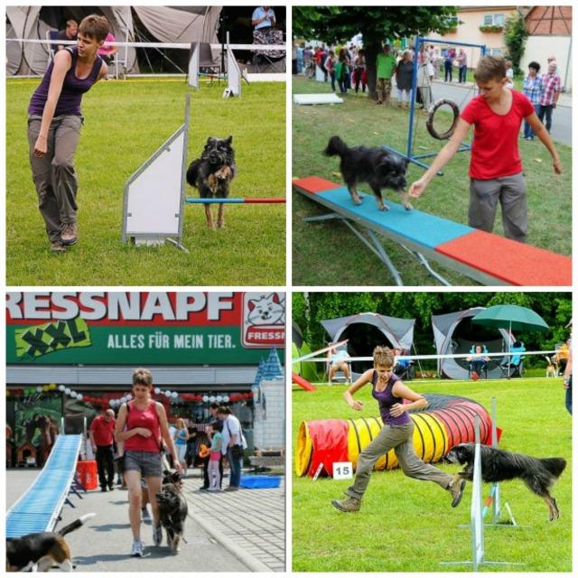 Hund-aus-Rumänien-Sport