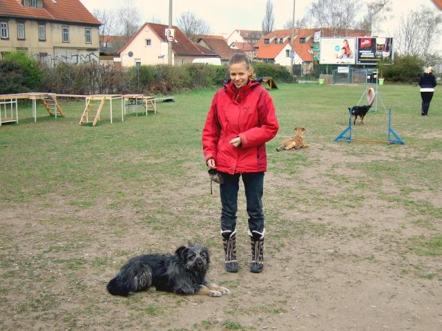 Hund-aus-Tierheim