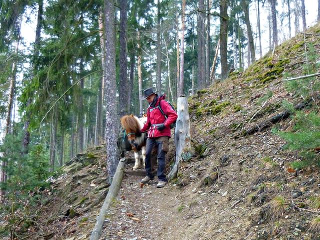 Packpony-Treppe