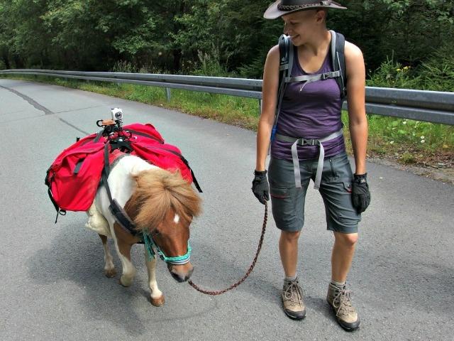 Schmalwassertalsperre-Pony