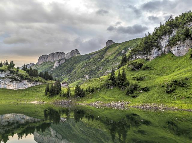 Appenzell-Bollenwees-Travelita