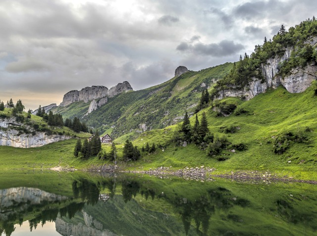 Appenzell-Bollenwees-Travelita