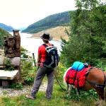 Wandern um Talsperre Thüringen