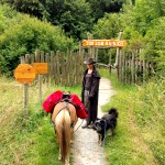 Wandern im Nationalpark Hainich