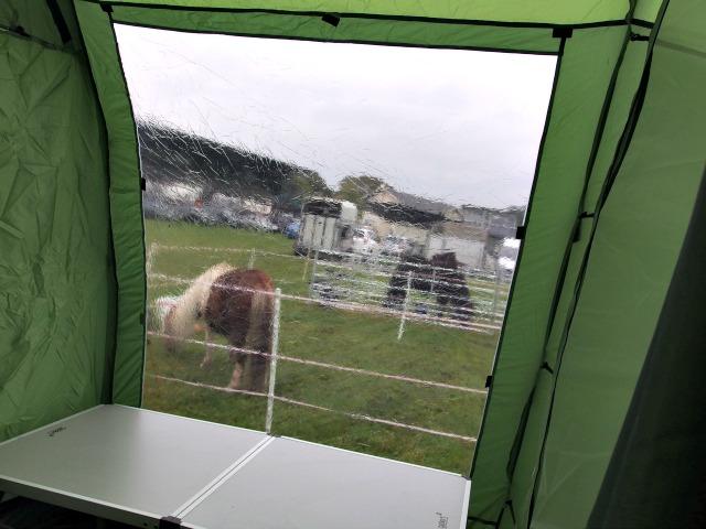 Zelt mit Fenster