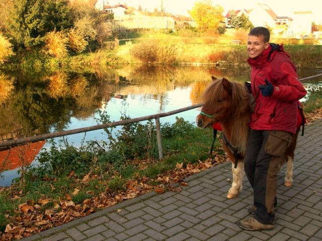 Foto Wandern mit Pony