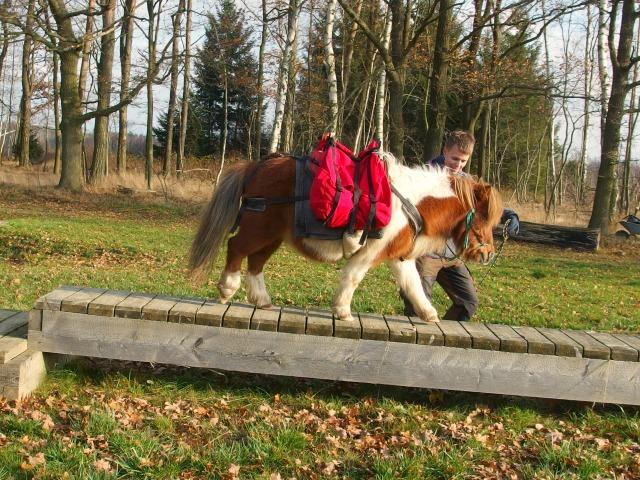 Extreme Trail Gut Heinrichshof