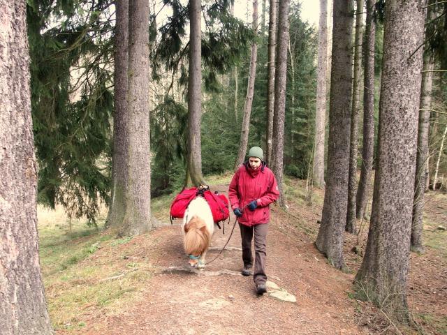 Talsperre Heyda wandern