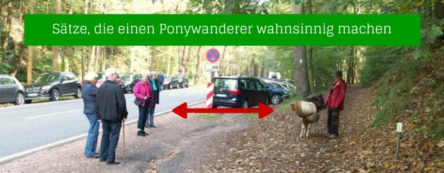 Ponywanderer
