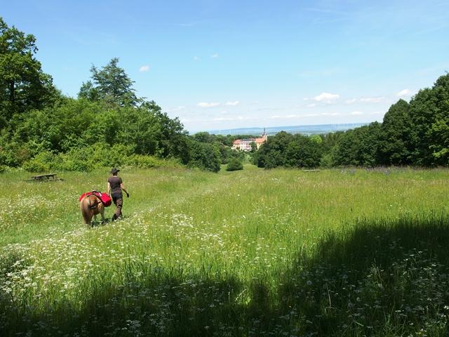 Wandern mit Pferd