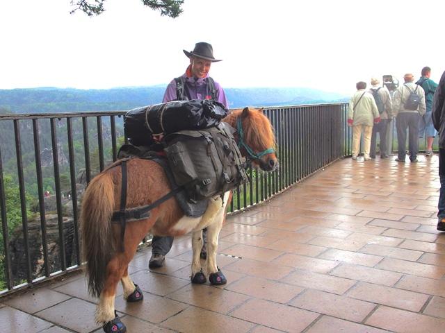 Hufschuhe Pony