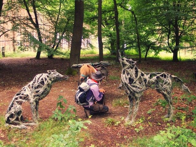 Wölfe Kunstwanderweg Fläming