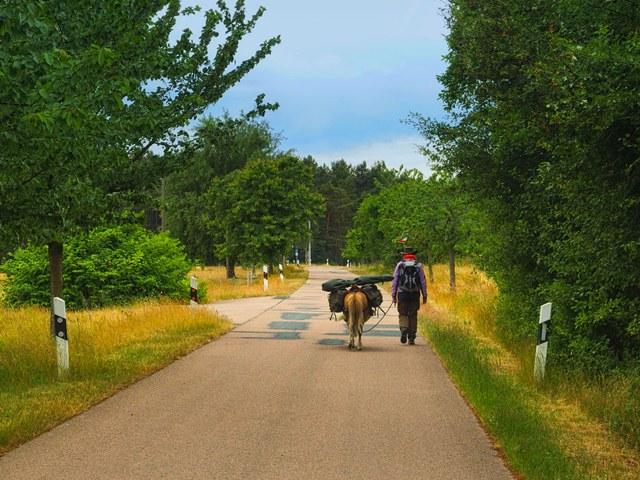 Radweg Hoher Fläming