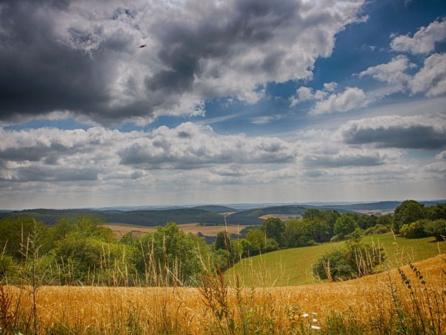 Aussicht Lahn-Dill-Berglandpfad