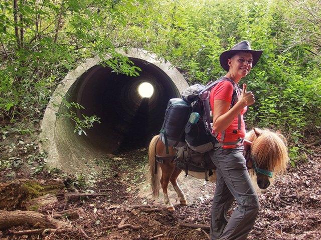 Mit Pferd durch Kanalrohr