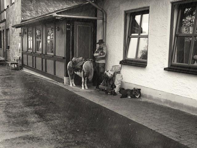 An der Fuchskaute auf dem Westerwaldsteig