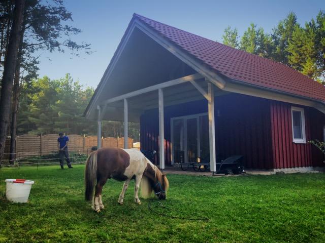 Mecklenburgische Seenplatte Campingplatz