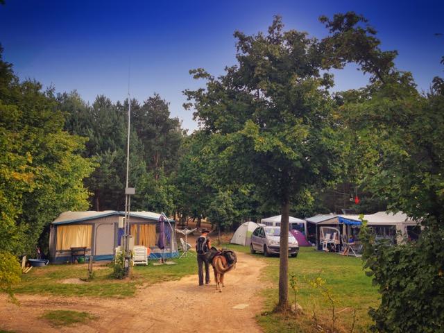 Mit dem Pony auf dem Campingplatz