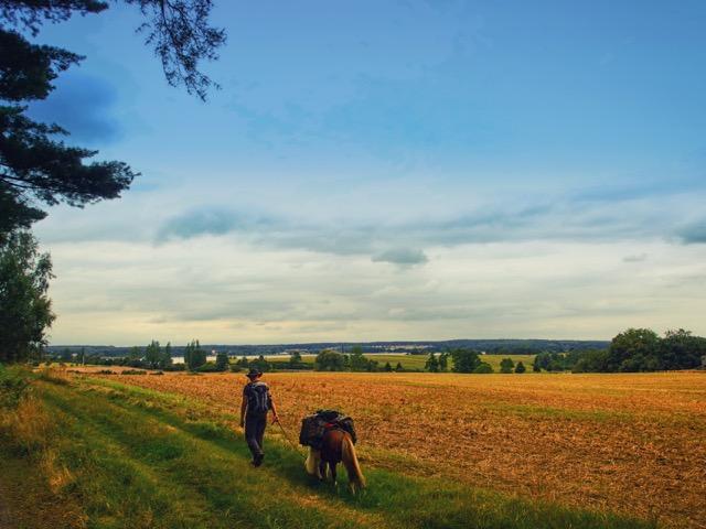 Wandern und Wanderreiten in der Mecklenburgischen Kleinseenplatte