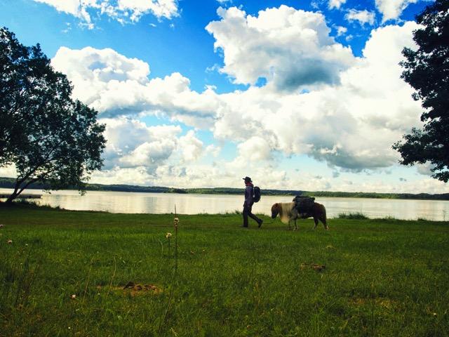 Mit Pony in der Mecklenburgischen Kleinseenplatte