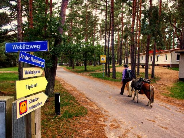 Mit Pferd auf Campingplatz übernachten