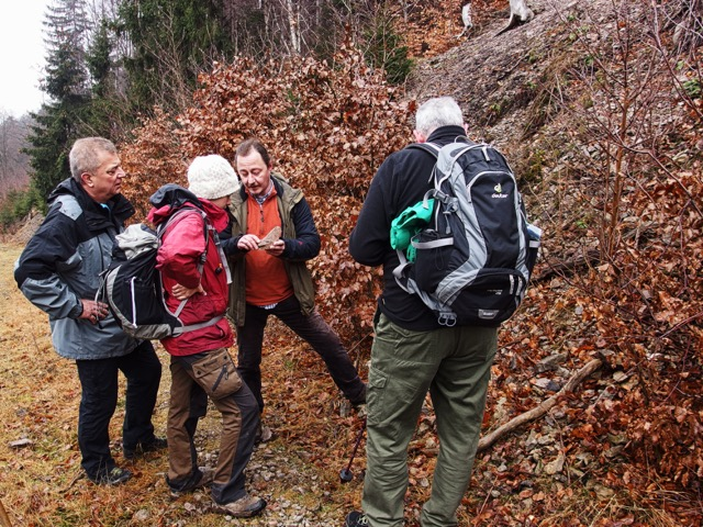 Mit Geologe im Geopark
