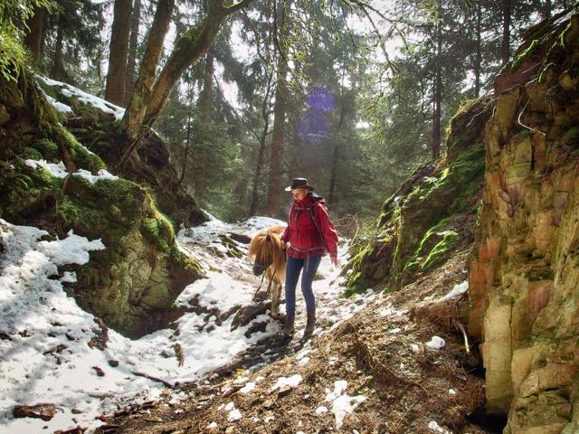 Bärenschlucht im Schnee