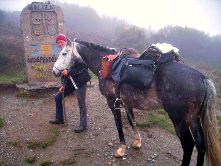 Gepäck am Pferd