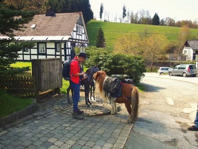 Gut Vorwald Unterbringung mit Pferd