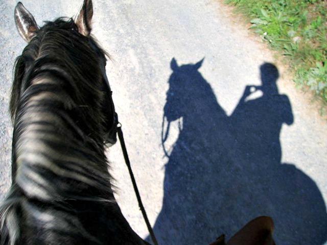 Pilgern mit einem Pferd
