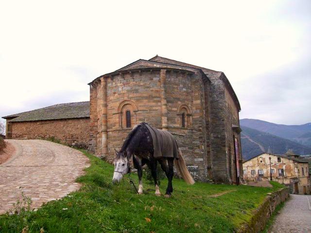 Pilgern mit Pferd