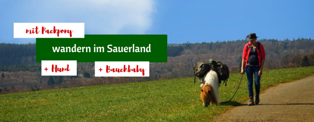 Wandern im Sauerland-2
