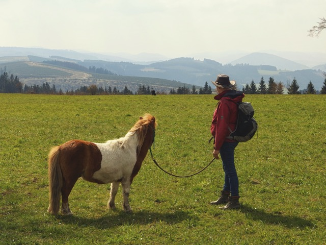 Wandern im Sauerland mit Aussicht