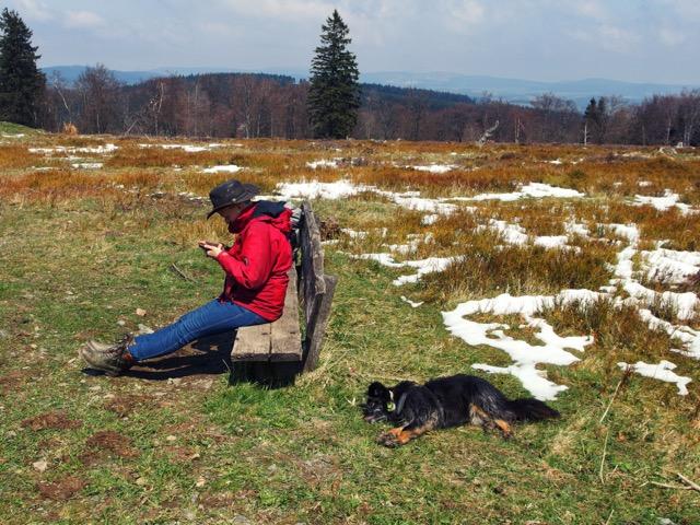Wandern mit Hund im Sauerland
