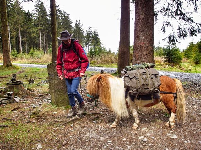 Wandern mit Pferd im Sauerland