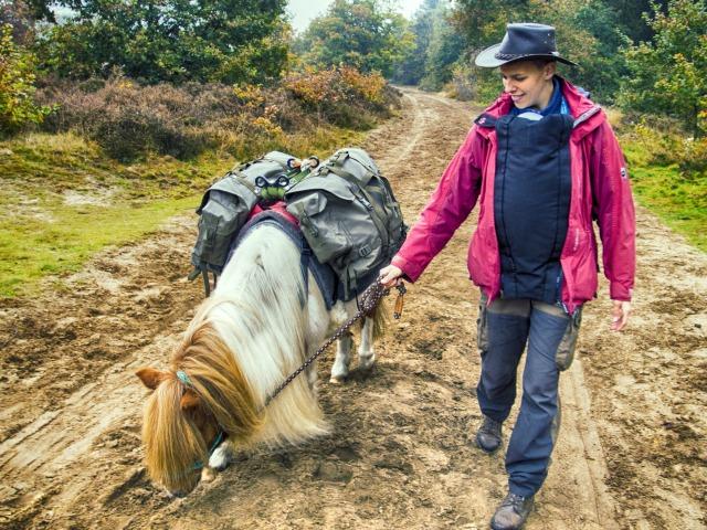 Wanderreiten Veluwe
